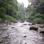 増水中の里川