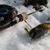 新ロッドと新ルアーにて、今季初源流釣行。